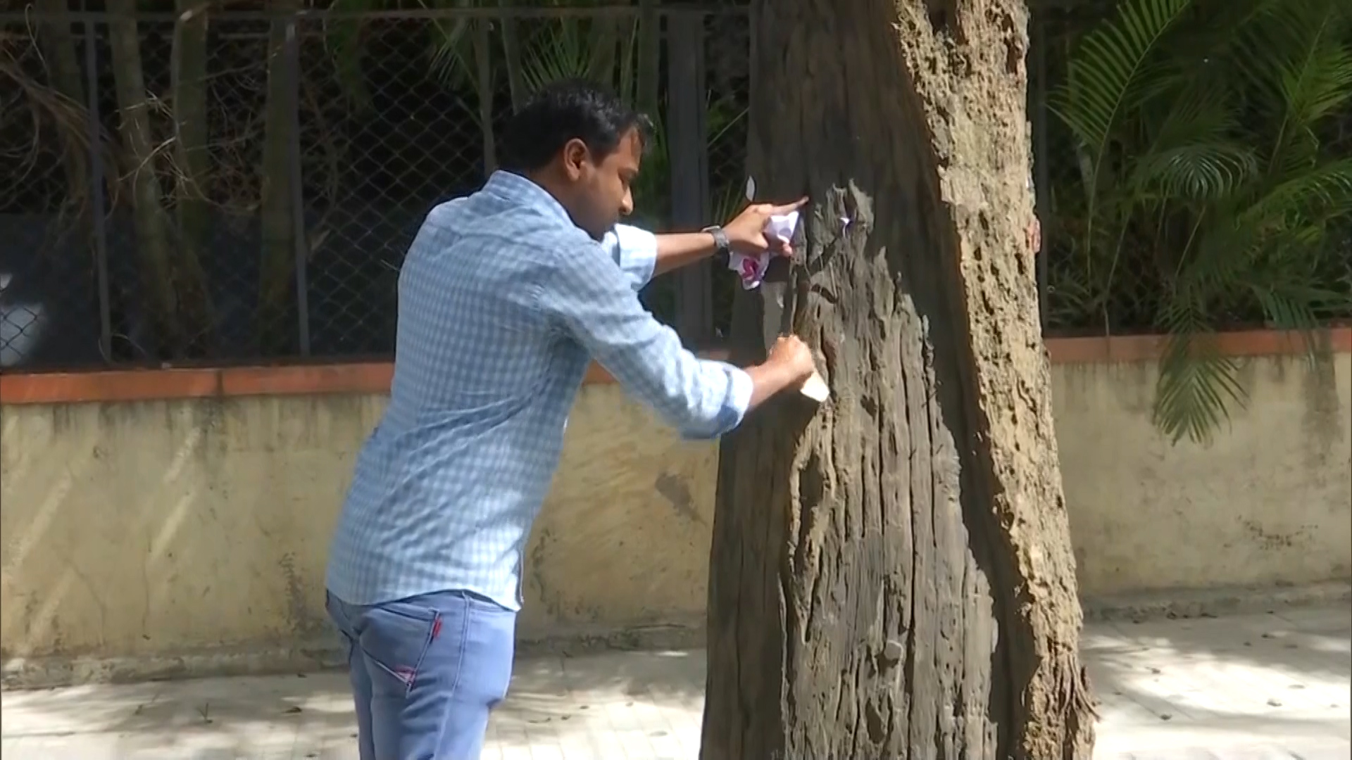DRDO scientist on a mission to free tress of nails, posters