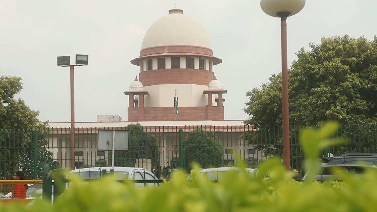 Cant cut trees in the name of Krishna: SC to UP