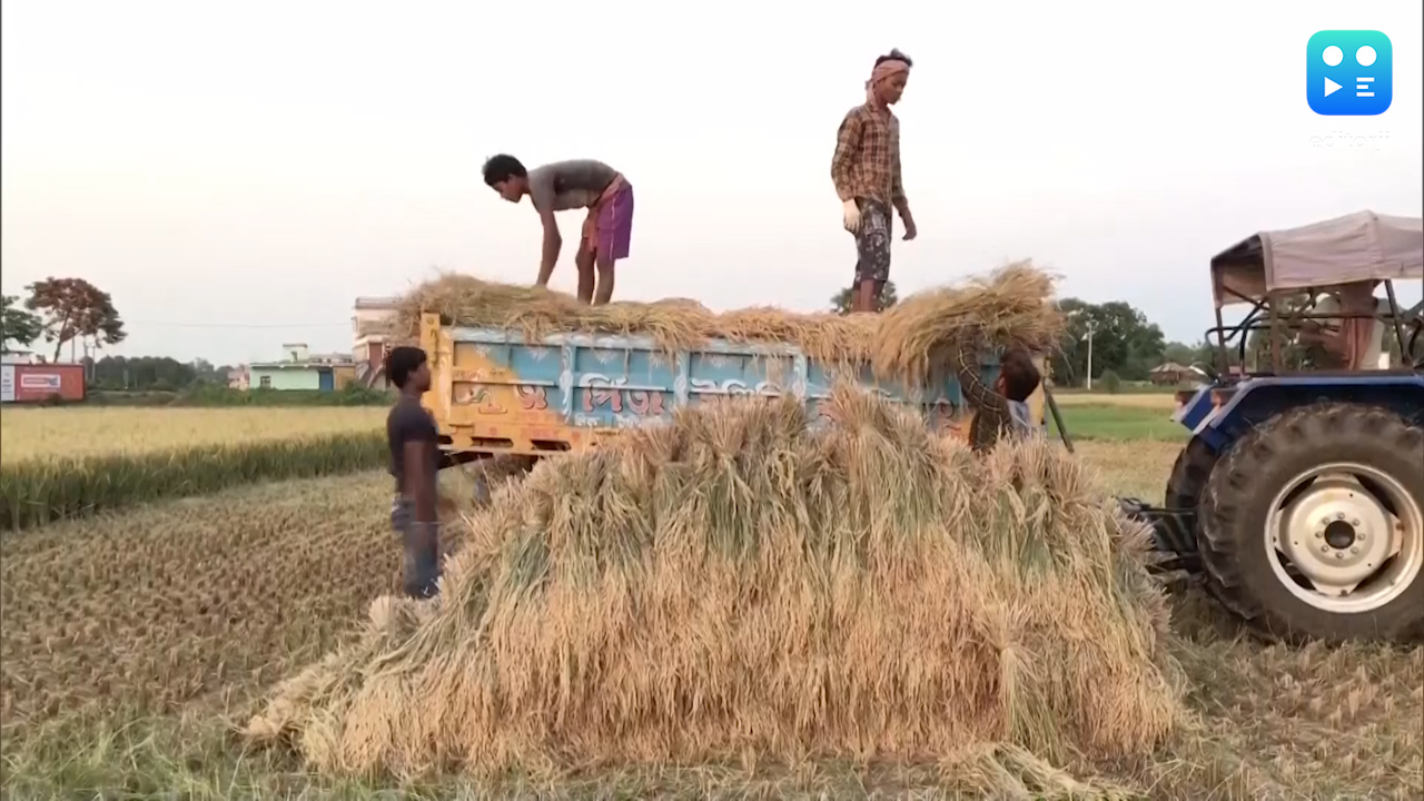 India needs food processing revolution: PM Modi